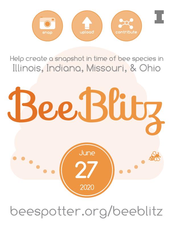 BeeBlitz 2020 flier