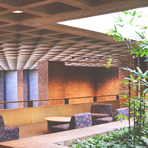 An interior space with a concrete ceiling, plants and empty chairs.